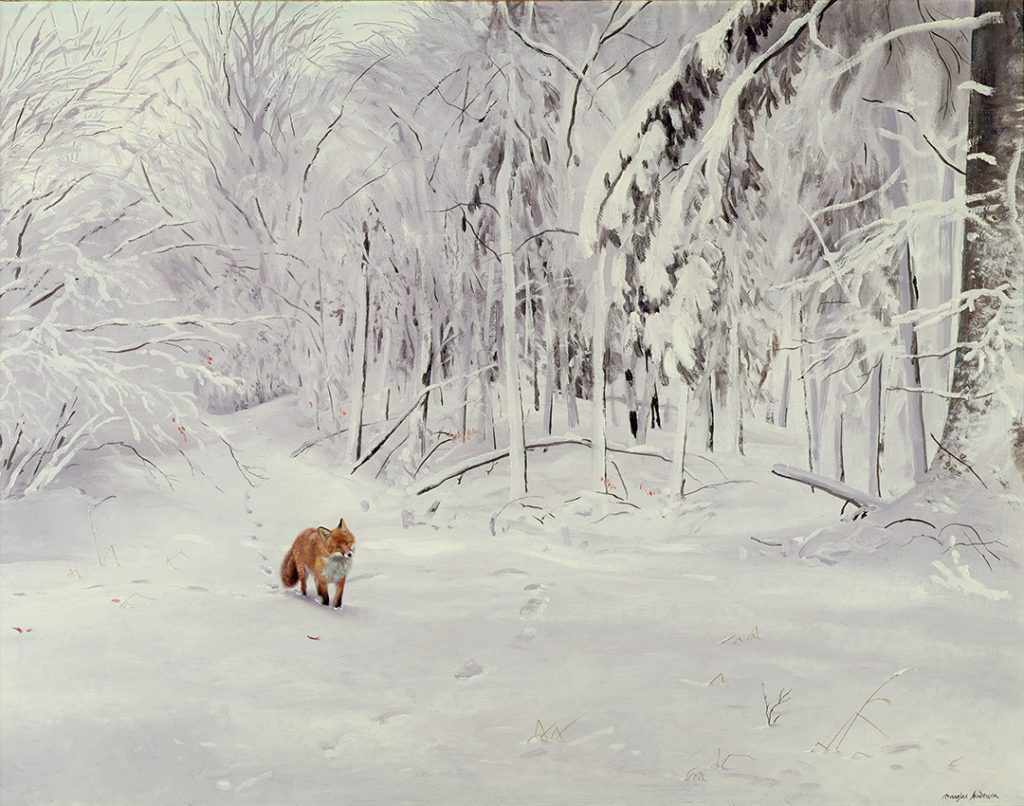 Fox in Deep Snow